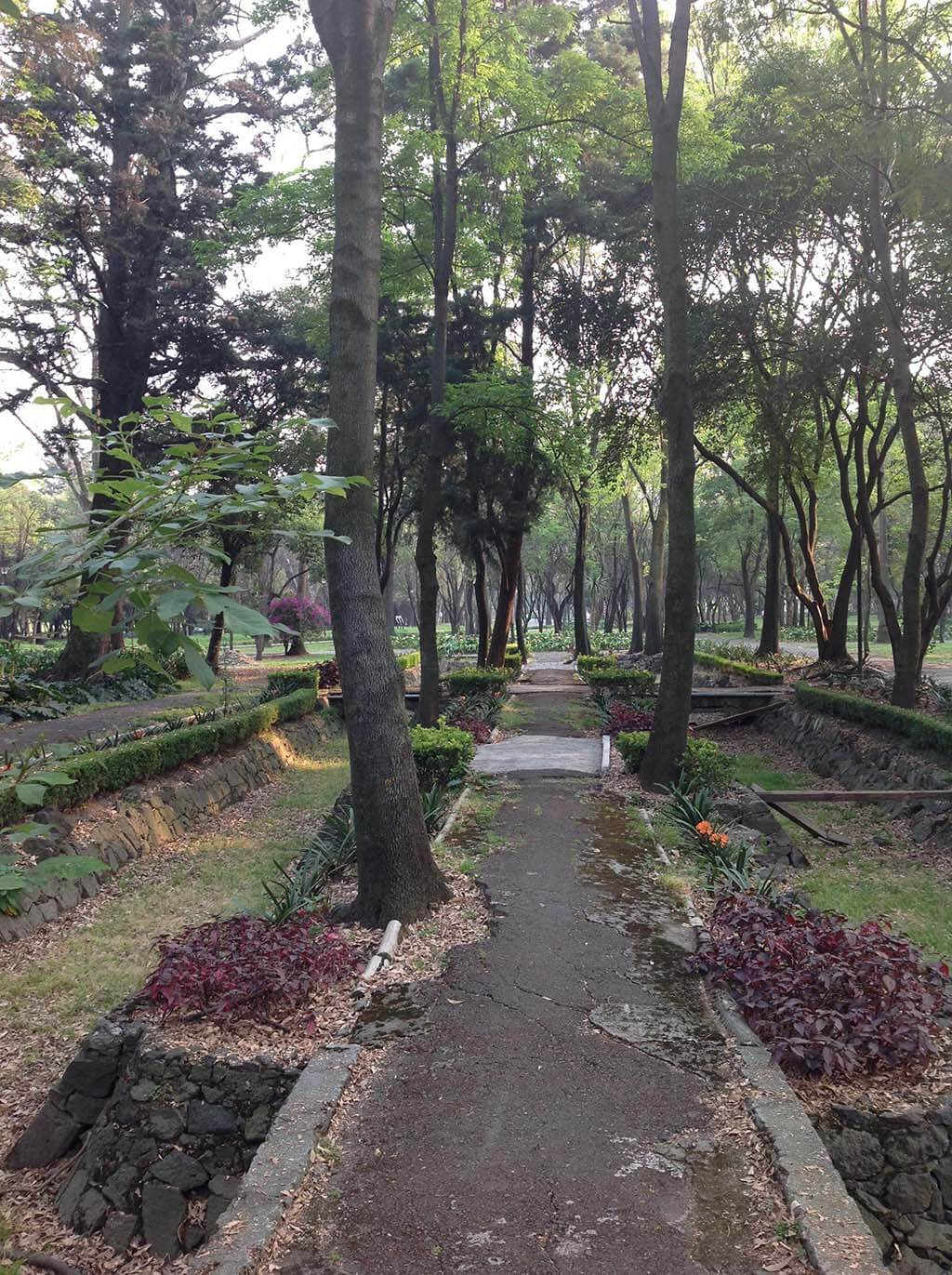 The best parks in Mexico City