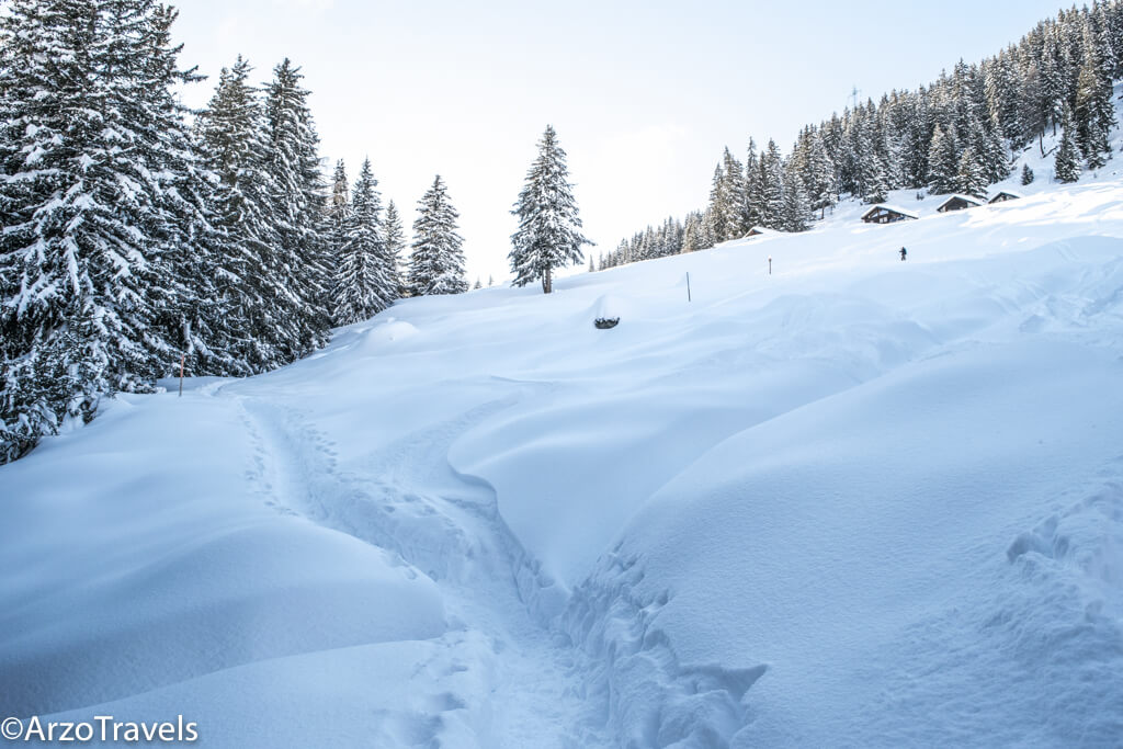Snowshoe Hiking in Verbier, Switzerland
